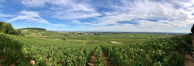 The heart of Burgundy